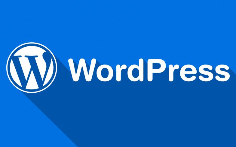 10 Reasons Why I Hate WordPress Self Hosted Blogging Platform